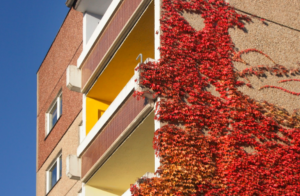 10 Rental Property Maintenance Items To Check This Fall