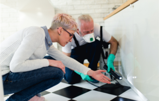 6 Ways To Bug-Proof Your Rental Property