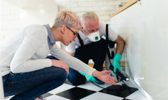How To Deal With The Most Common Pests In Rental Housing