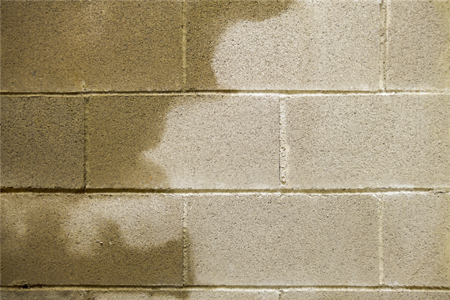 4 Types of Water-Intrusion Problems in Rental Property
